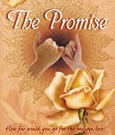 Book Review: 'The Promise' by Chital Mehta